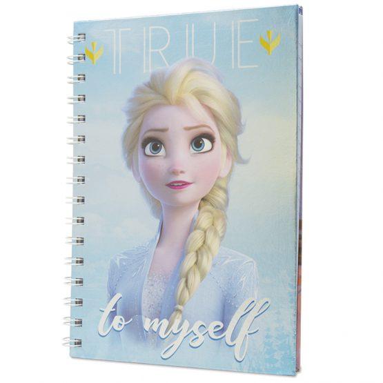 Frozen jegyzetfüzet
