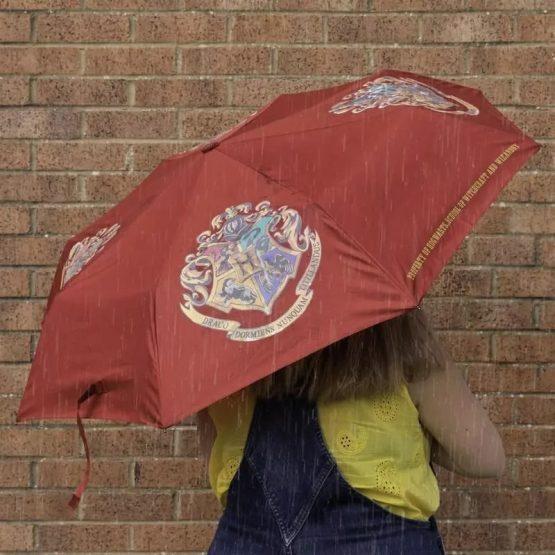 hary potter esernyő